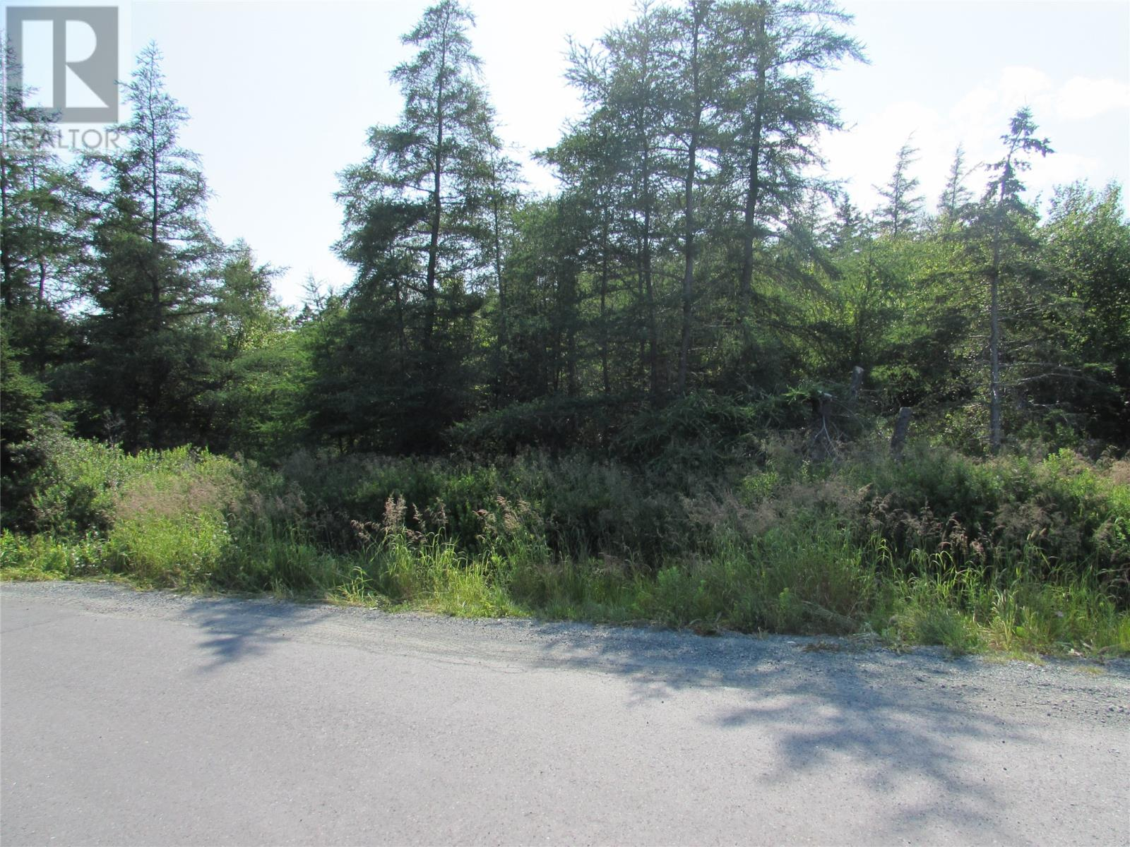 8 Barry's Island Road N, Avondale, Newfoundland & Labrador  A0A 1B0 - Photo 15 - 1230232