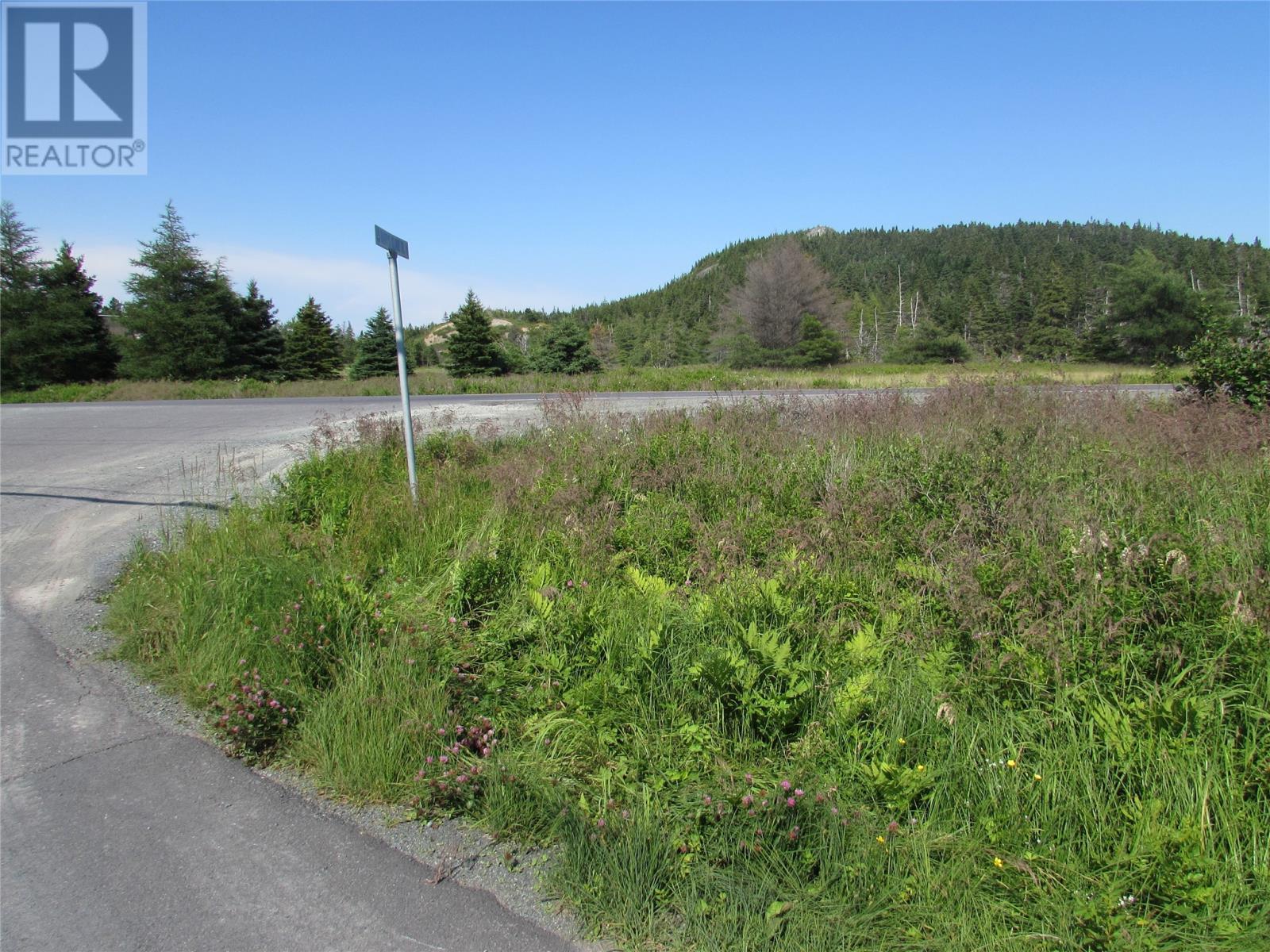 8 Barry's Island Road N, Avondale, Newfoundland & Labrador  A0A 1B0 - Photo 19 - 1230232