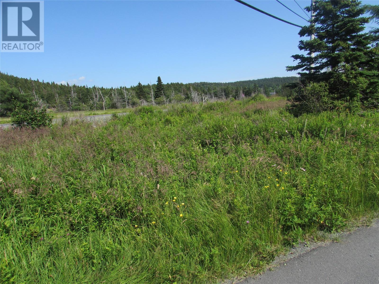 8 Barry's Island Road N, Avondale, Newfoundland & Labrador  A0A 1B0 - Photo 20 - 1230232