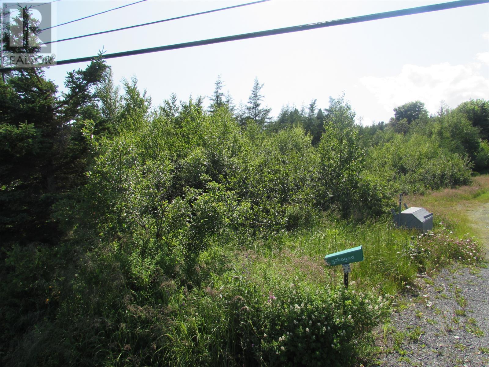 8 Barry's Island Road N, Avondale, Newfoundland & Labrador  A0A 1B0 - Photo 3 - 1230232
