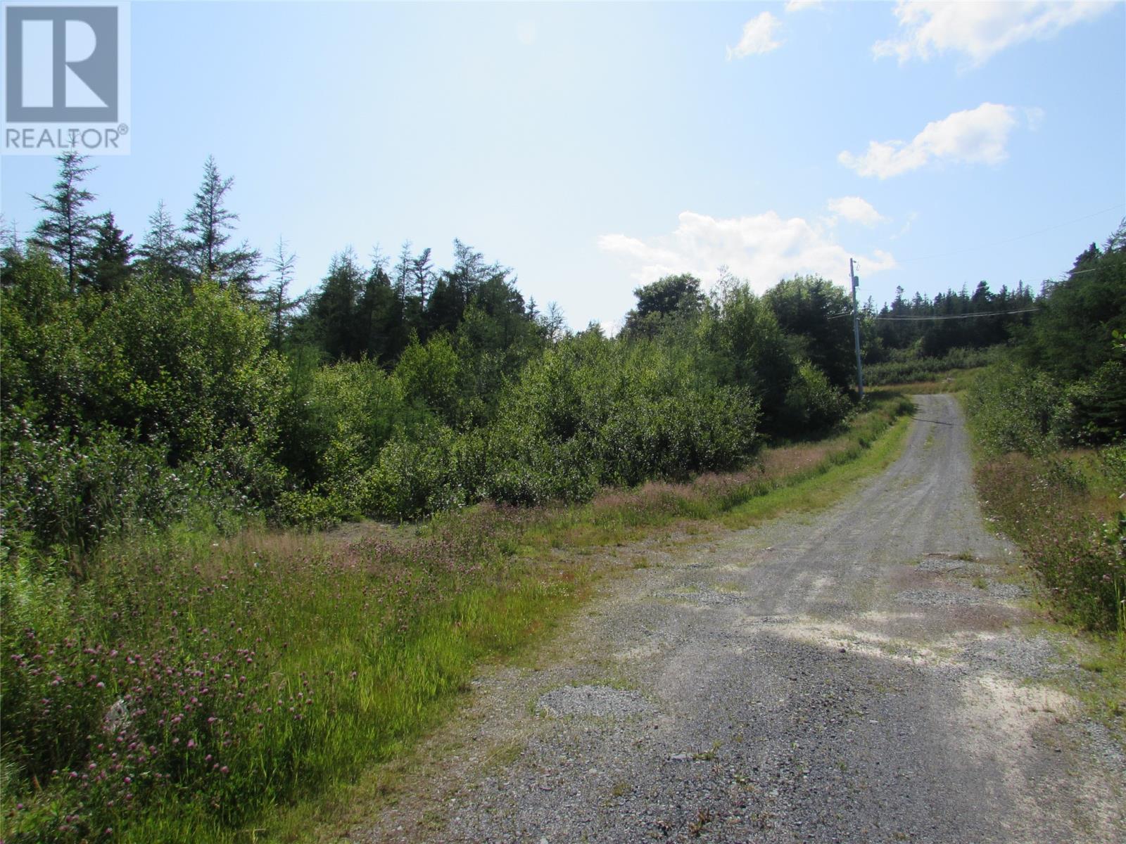 8 Barry's Island Road N, Avondale, Newfoundland & Labrador  A0A 1B0 - Photo 5 - 1230232