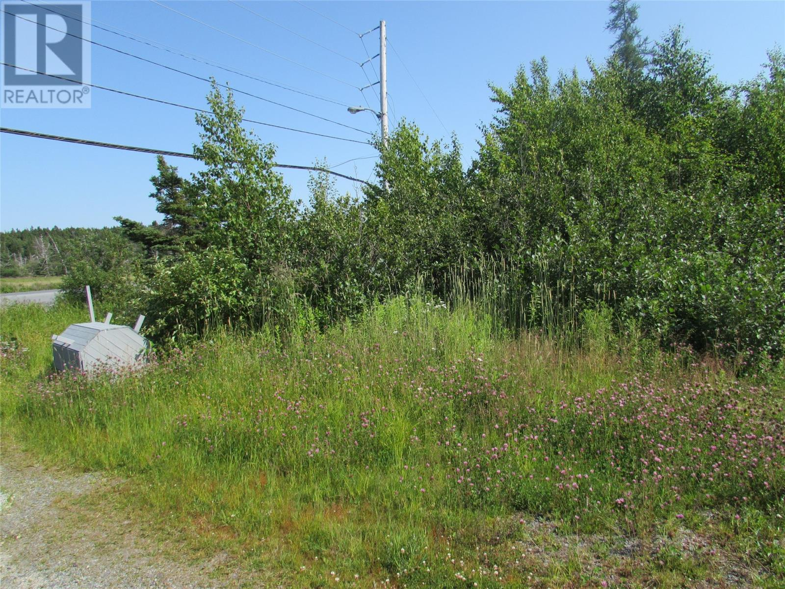 8 Barry's Island Road N, Avondale, Newfoundland & Labrador  A0A 1B0 - Photo 8 - 1230232