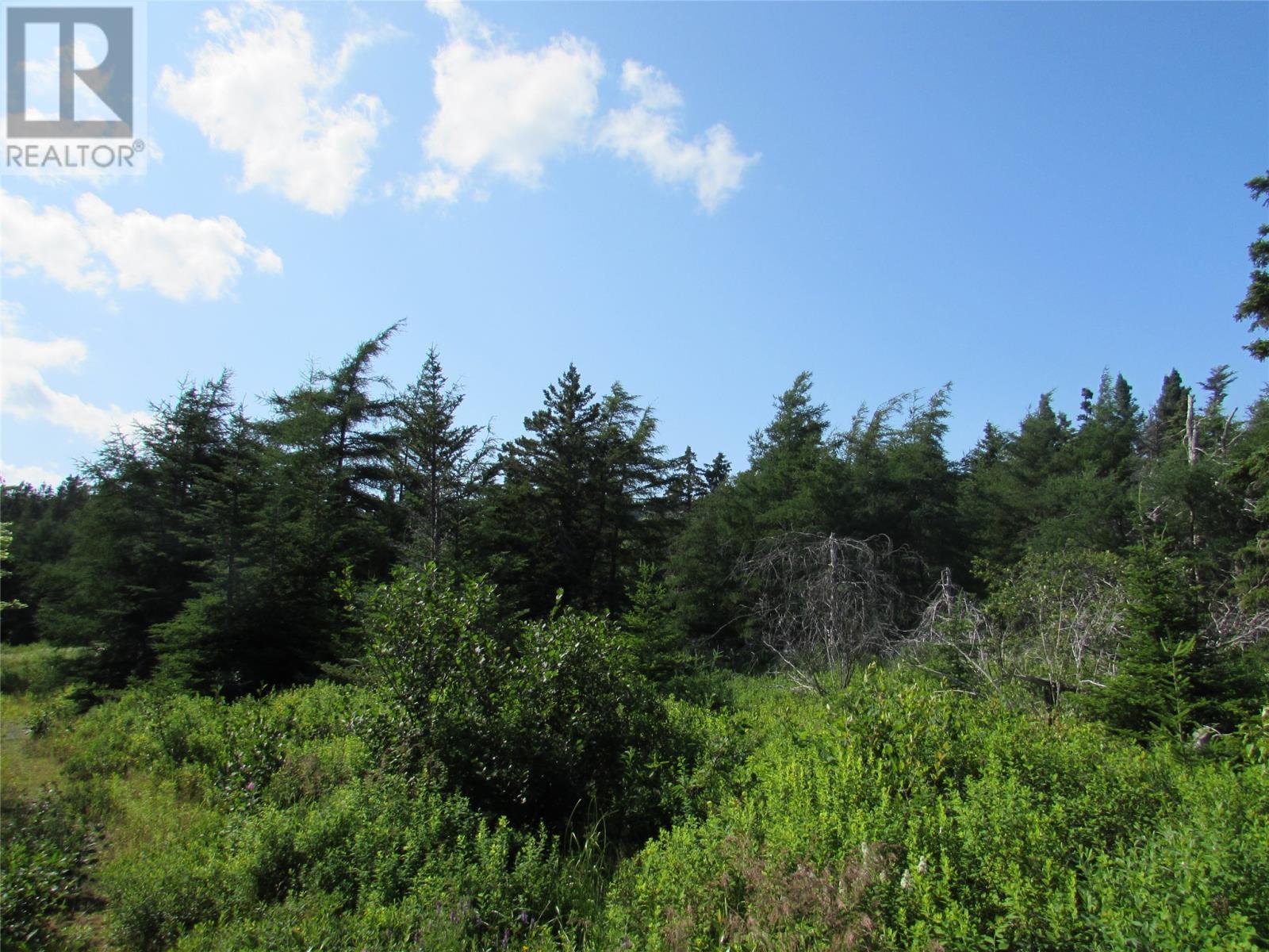 8a Barry's Island North Road, Avondale, Newfoundland & Labrador  A0A 1B0 - Photo 9 - 1230233