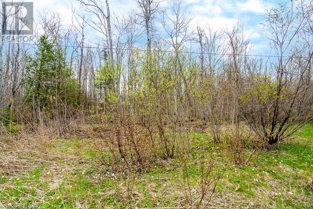47 Meadows Avenue, Tay, Ontario  L0K 2C0 - Photo 10 - 40110332