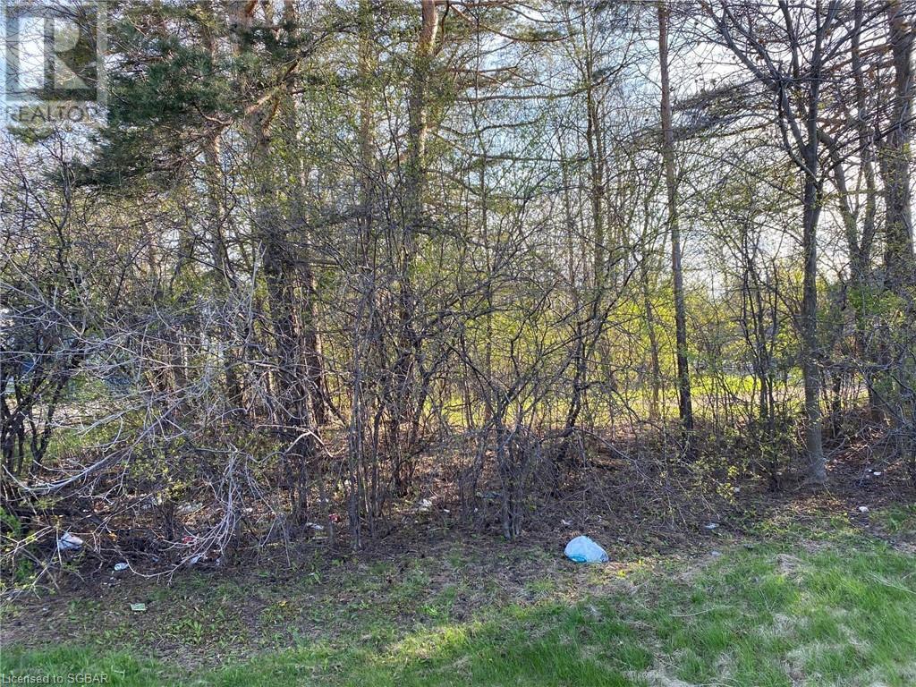 9833 Beachwood Road, Collingwood, Ontario  L9Y 3Z1 - Photo 2 - 40110044