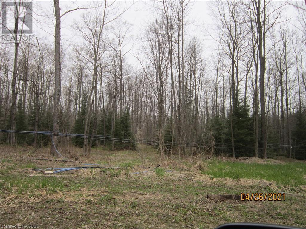 Lt 26 3 Concession, West Grey, Ontario  N0G 1R0 - Photo 6 - 40105875