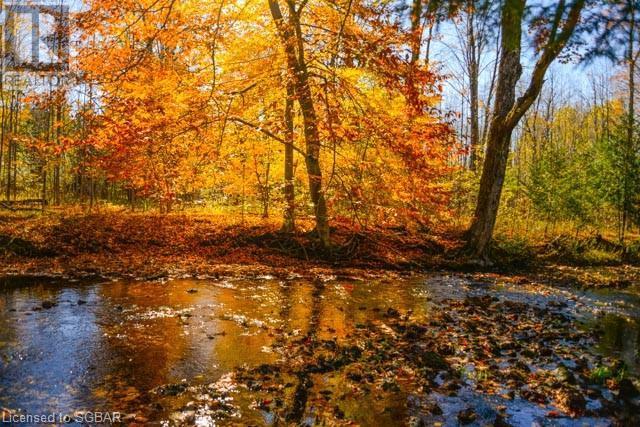 062653 Sunny Valley Road, Georgian Bluffs, Ontario  N4K 5N6 - Photo 12 - 40075572