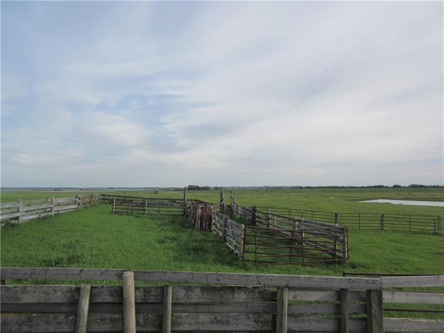 250 Range Rd, Rural Wheatland County, Alberta  T1P 1J6 - Photo 8 - C4302878