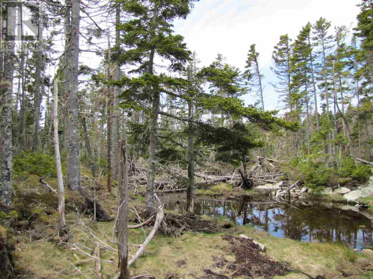 Lot 5 Hirtle Island, Lahave Islands, Nova Scotia  B0R 1C0 - Photo 22 - 201911548