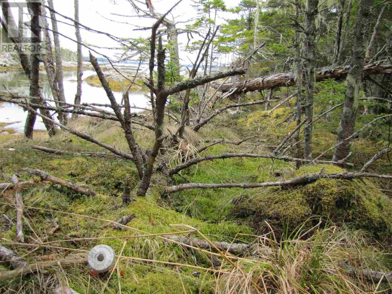 Lot 5 Hirtle Island, Lahave Islands, Nova Scotia  B0R 1C0 - Photo 26 - 201911548