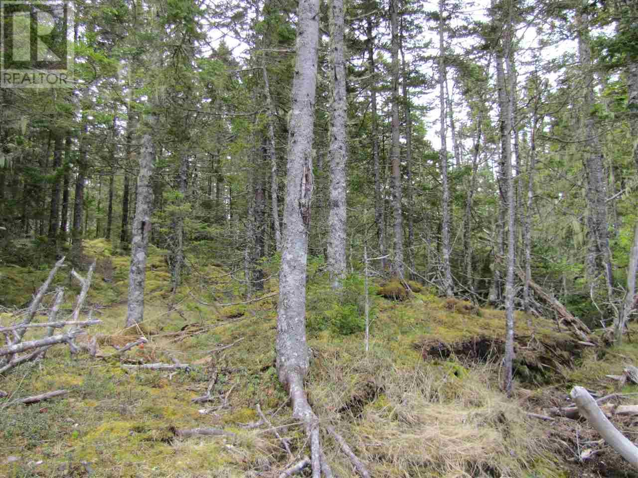 Lot 5 Hirtle Island, Lahave Islands, Nova Scotia  B0R 1C0 - Photo 27 - 201911548