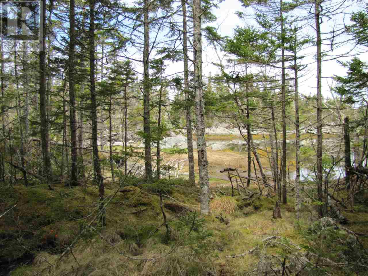 Lot 5 Hirtle Island, Lahave Islands, Nova Scotia  B0R 1C0 - Photo 22 - 201911549