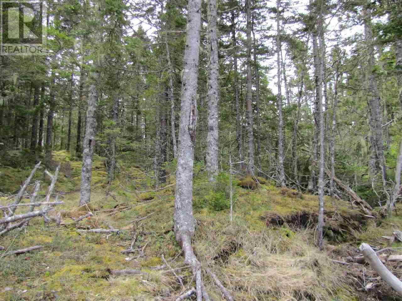 Lot 5 Hirtle Island, Lahave Islands, Nova Scotia  B0R 1C0 - Photo 23 - 201911549