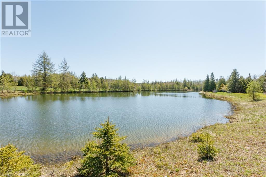 32979 3rd Concession, Osprey Twp, Ontario  N0C 1A0 - Photo 11 - 40109458