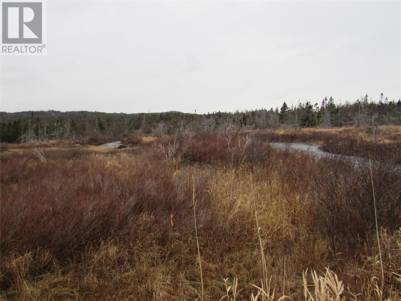 138-170 Salmonier Line, Holyrood, Newfoundland & Labrador  A0A 2R0 - Photo 10 - 1231056