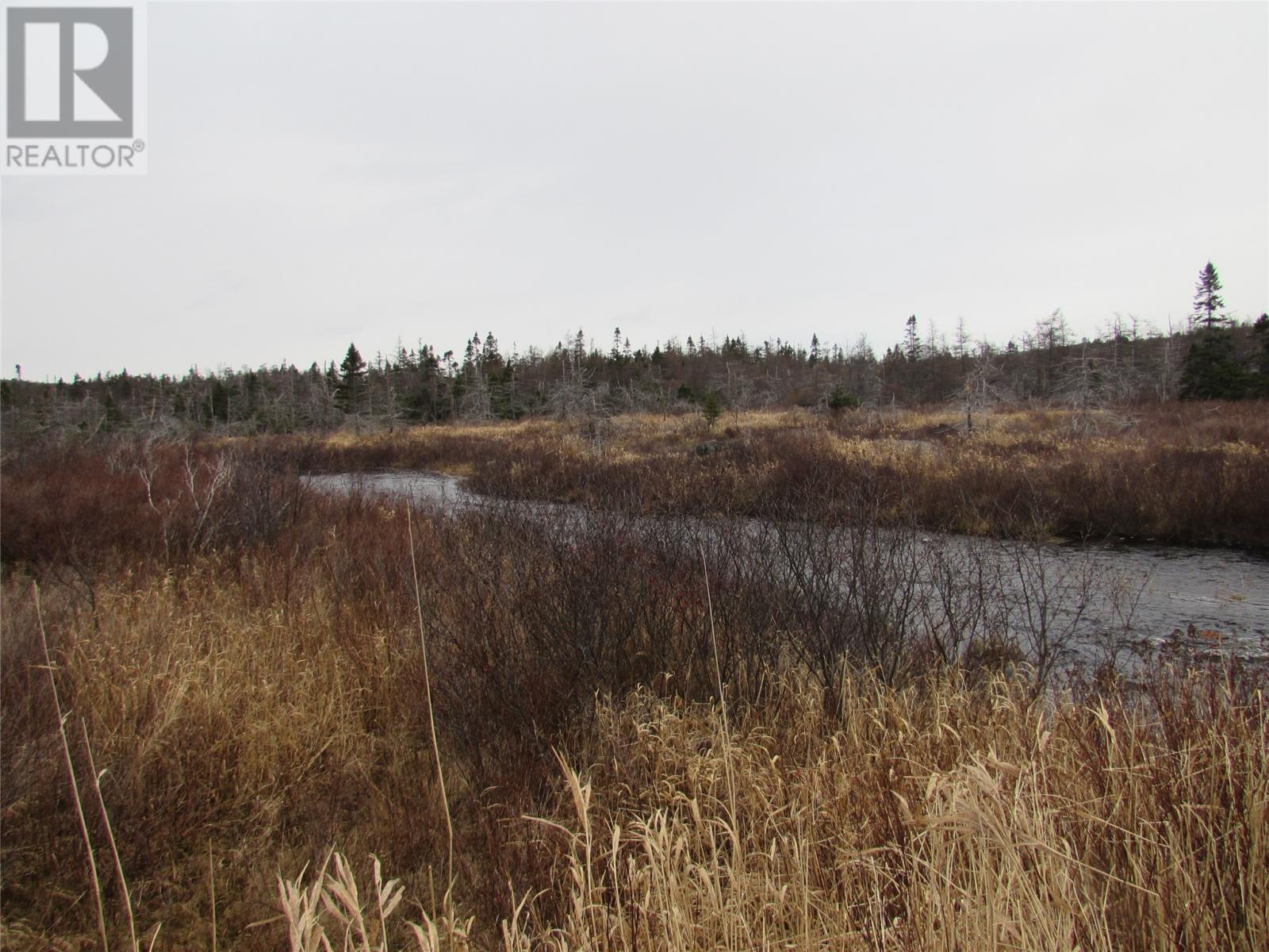 138-170 Salmonier Line, Holyrood, Newfoundland & Labrador  A0A 2R0 - Photo 11 - 1231056