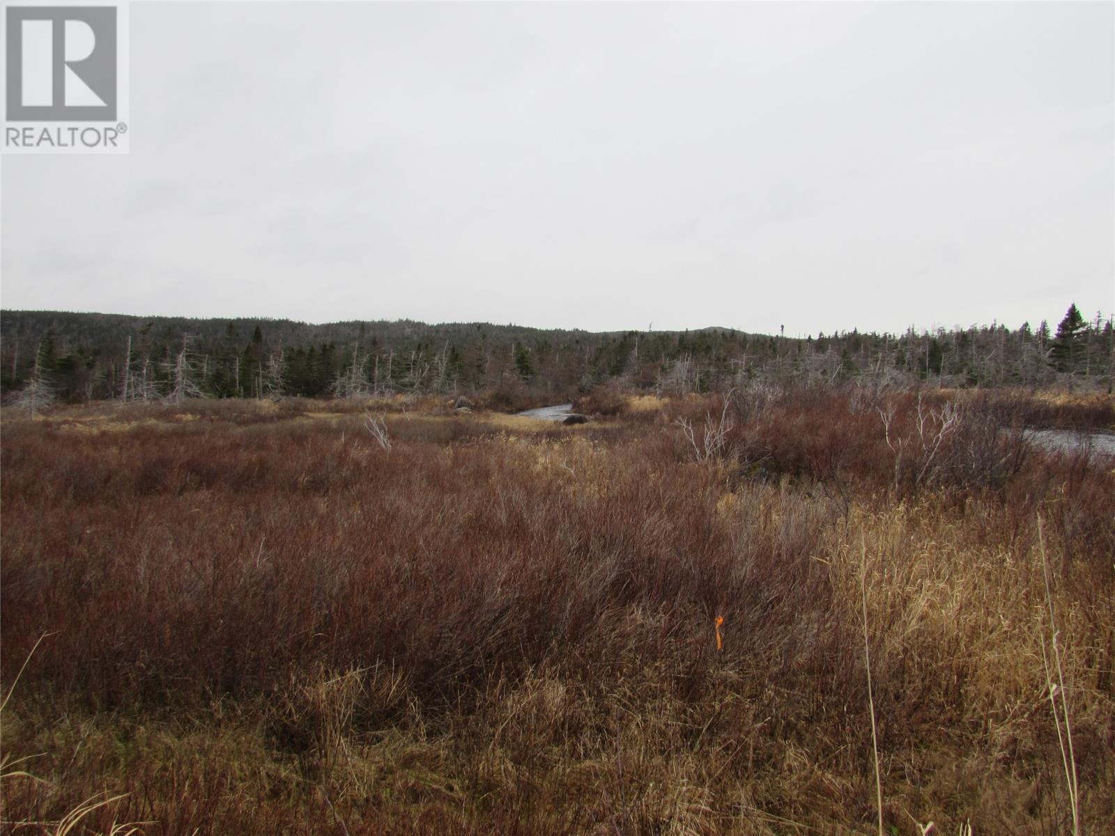 138-170 Salmonier Line, Holyrood, Newfoundland & Labrador  A0A 2R0 - Photo 12 - 1231056