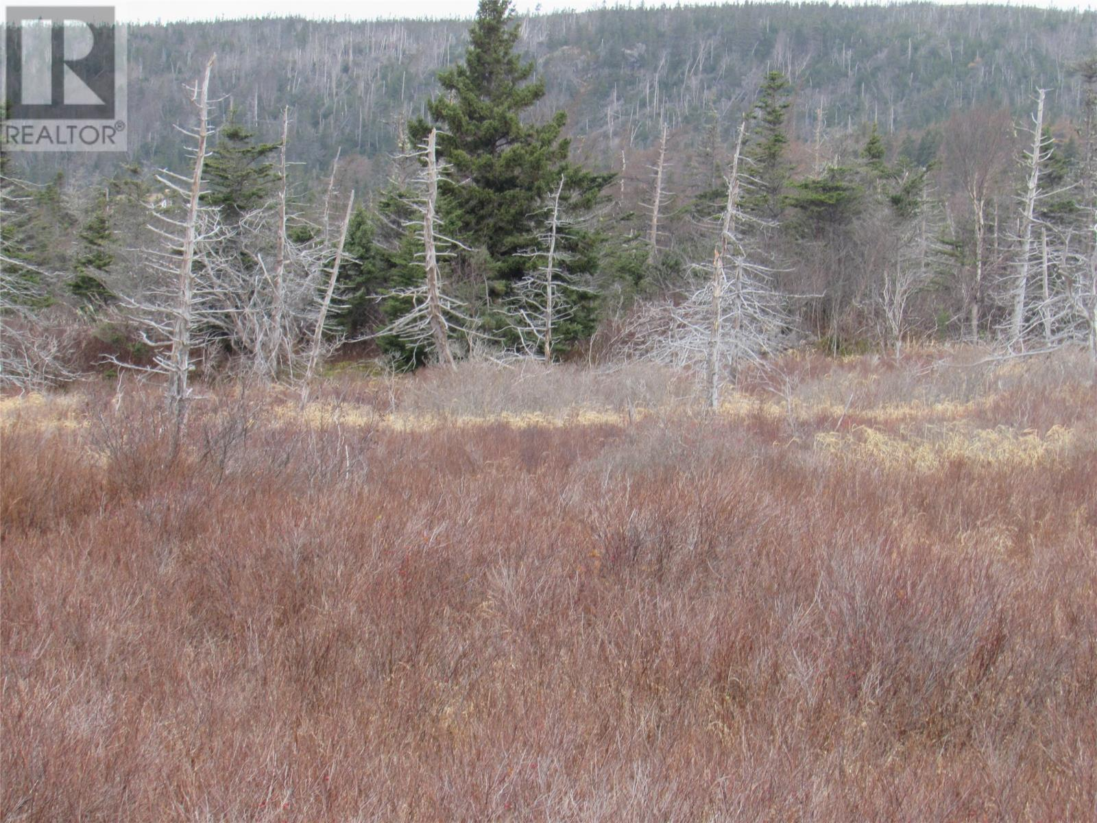 138-170 Salmonier Line, Holyrood, Newfoundland & Labrador  A0A 2R0 - Photo 14 - 1231056