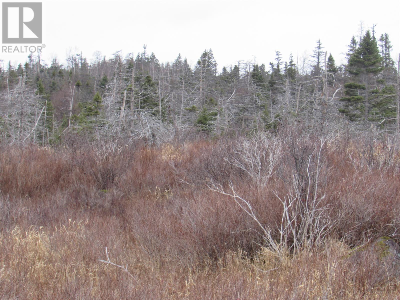 138-170 Salmonier Line, Holyrood, Newfoundland & Labrador  A0A 2R0 - Photo 15 - 1231056