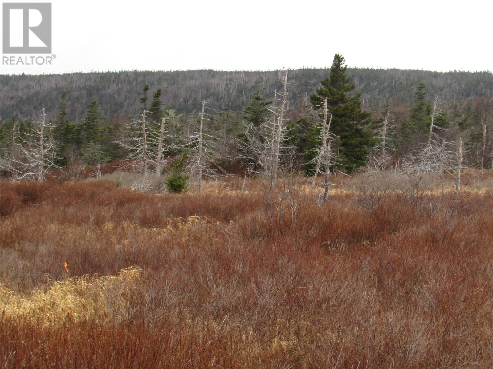 138-170 Salmonier Line, Holyrood, Newfoundland & Labrador  A0A 2R0 - Photo 16 - 1231056