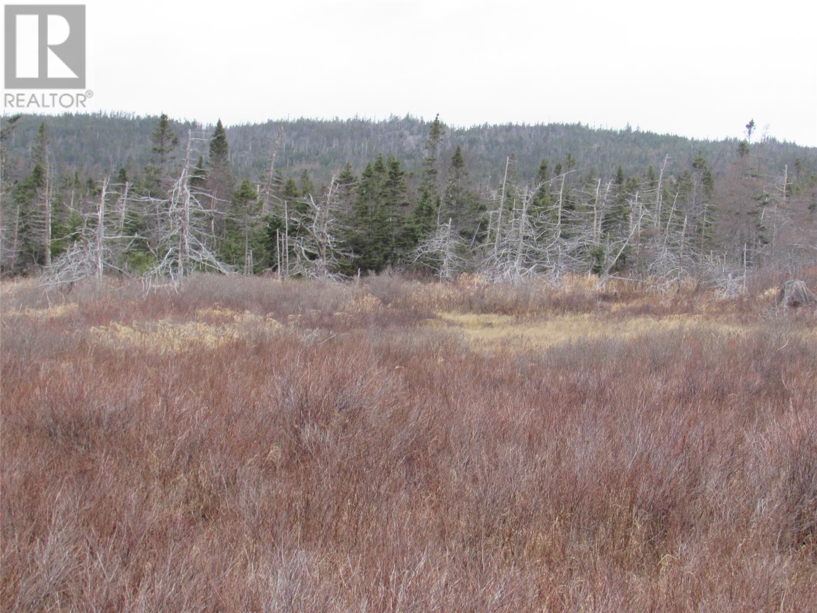 138-170 Salmonier Line, Holyrood, Newfoundland & Labrador  A0A 2R0 - Photo 17 - 1231056