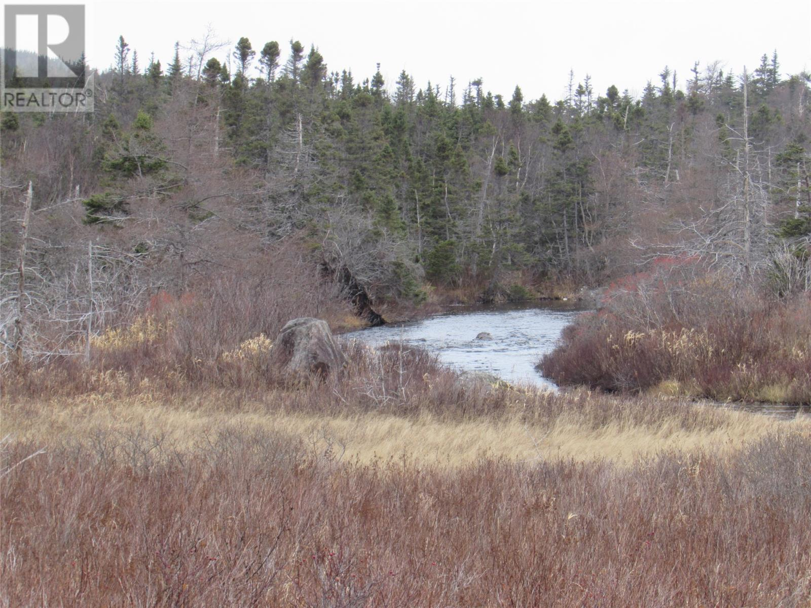 138-170 Salmonier Line, Holyrood, Newfoundland & Labrador  A0A 2R0 - Photo 18 - 1231056