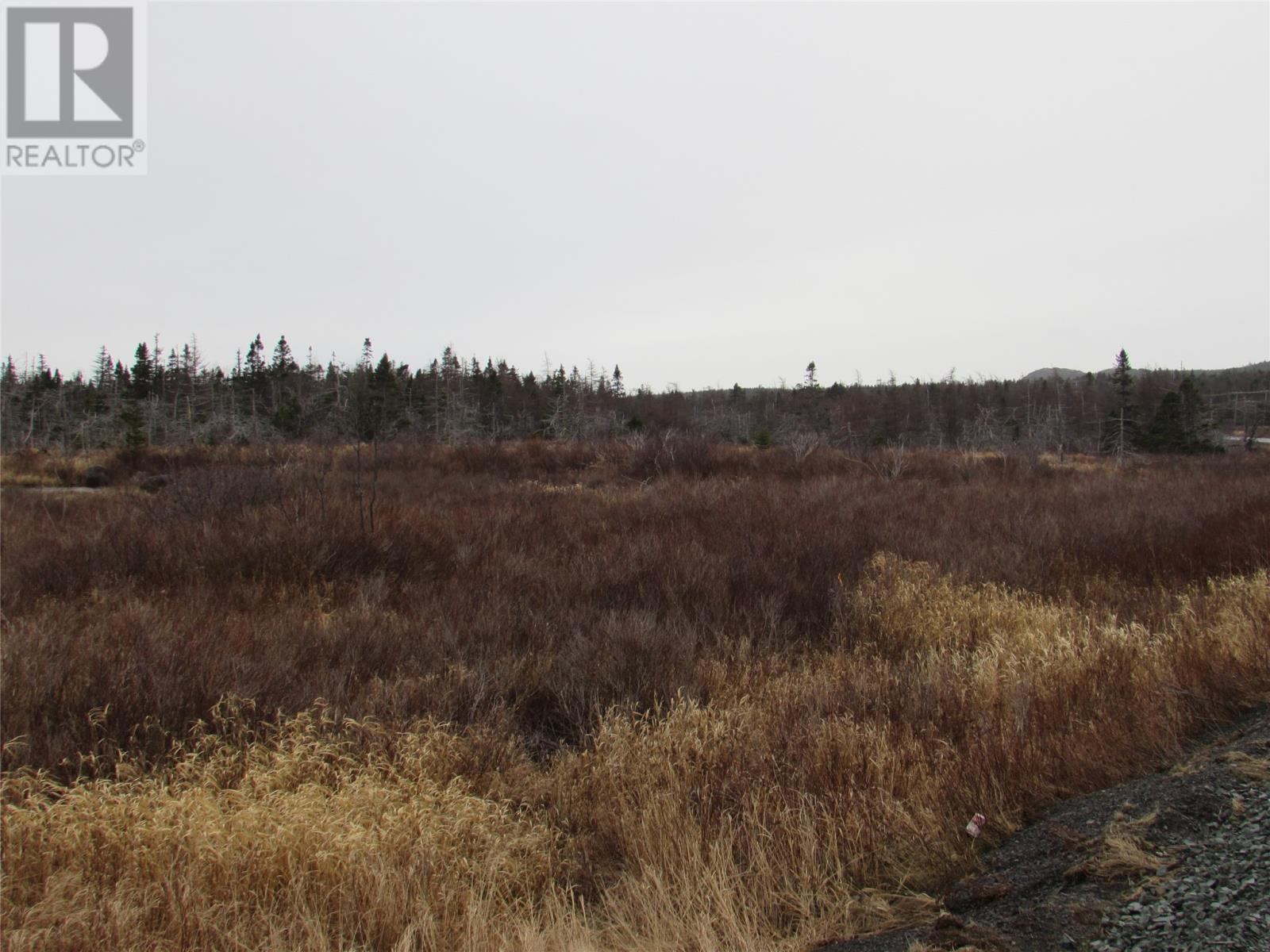 138-170 Salmonier Line, Holyrood, Newfoundland & Labrador  A0A 2R0 - Photo 19 - 1231056