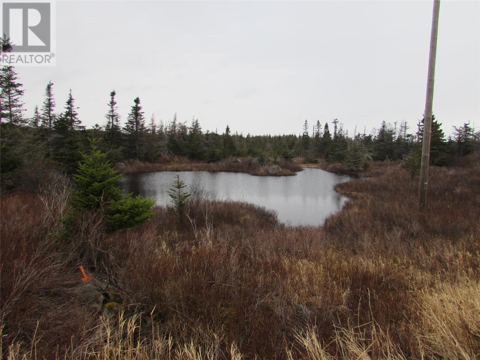 138-170 Salmonier Line, Holyrood, Newfoundland & Labrador  A0A 2R0 - Photo 20 - 1231056