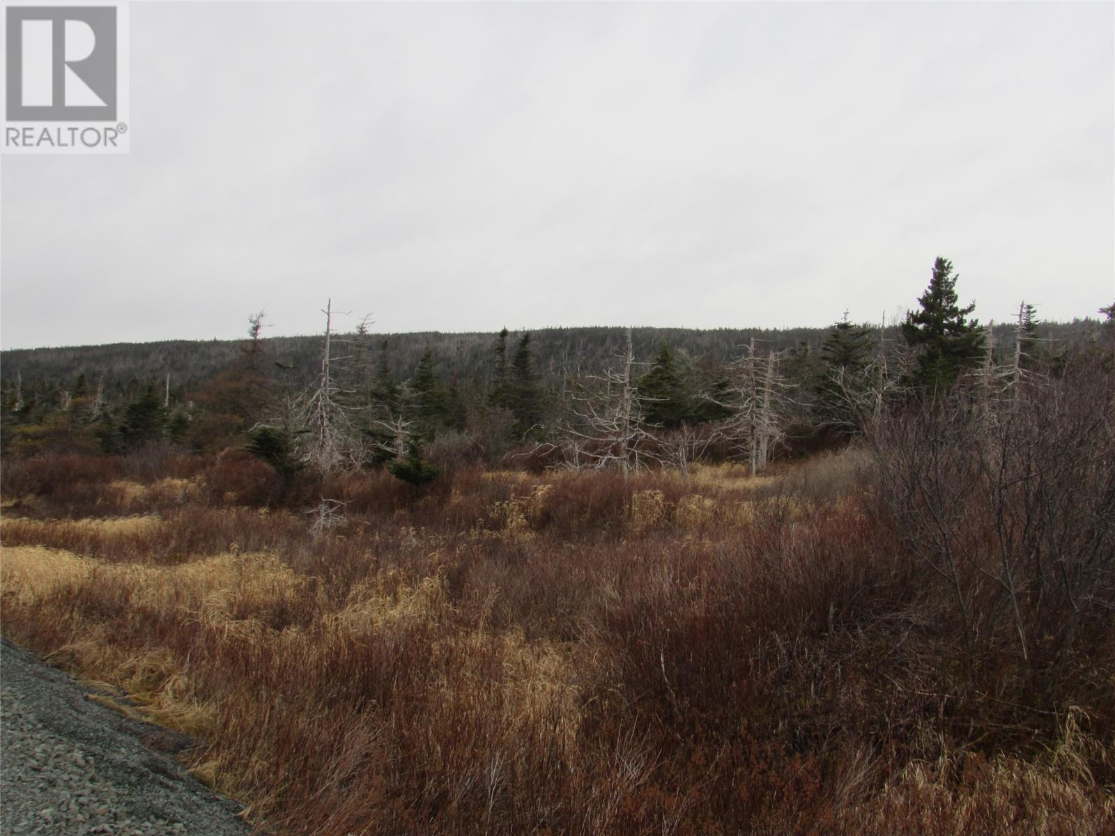 138-170 Salmonier Line, Holyrood, Newfoundland & Labrador  A0A 2R0 - Photo 21 - 1231056