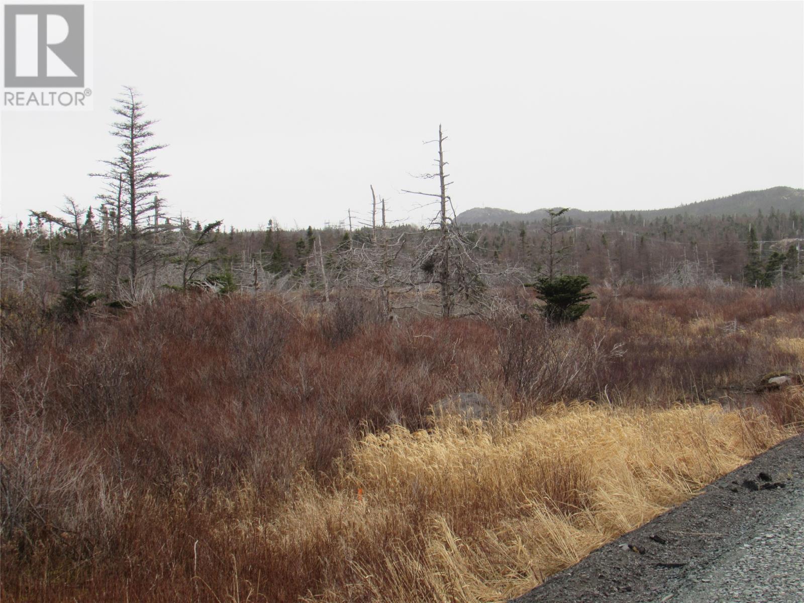 138-170 Salmonier Line, Holyrood, Newfoundland & Labrador  A0A 2R0 - Photo 23 - 1231056