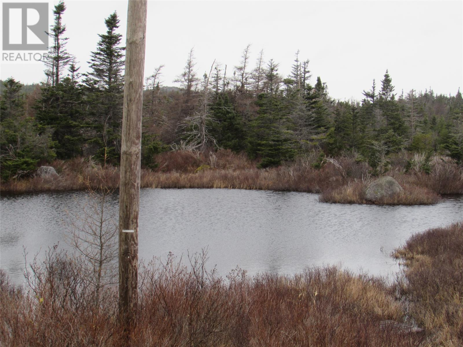 138-170 Salmonier Line, Holyrood, Newfoundland & Labrador  A0A 2R0 - Photo 24 - 1231056