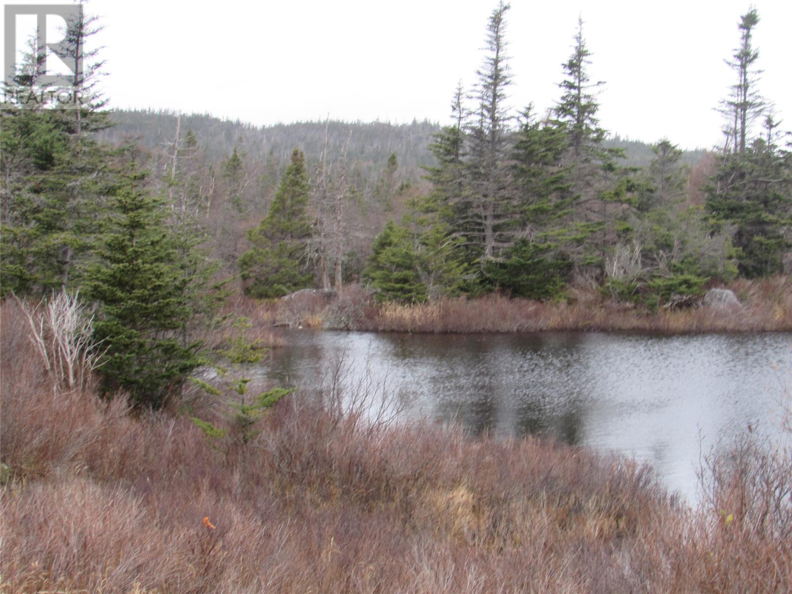 138-170 Salmonier Line, Holyrood, Newfoundland & Labrador  A0A 2R0 - Photo 25 - 1231056