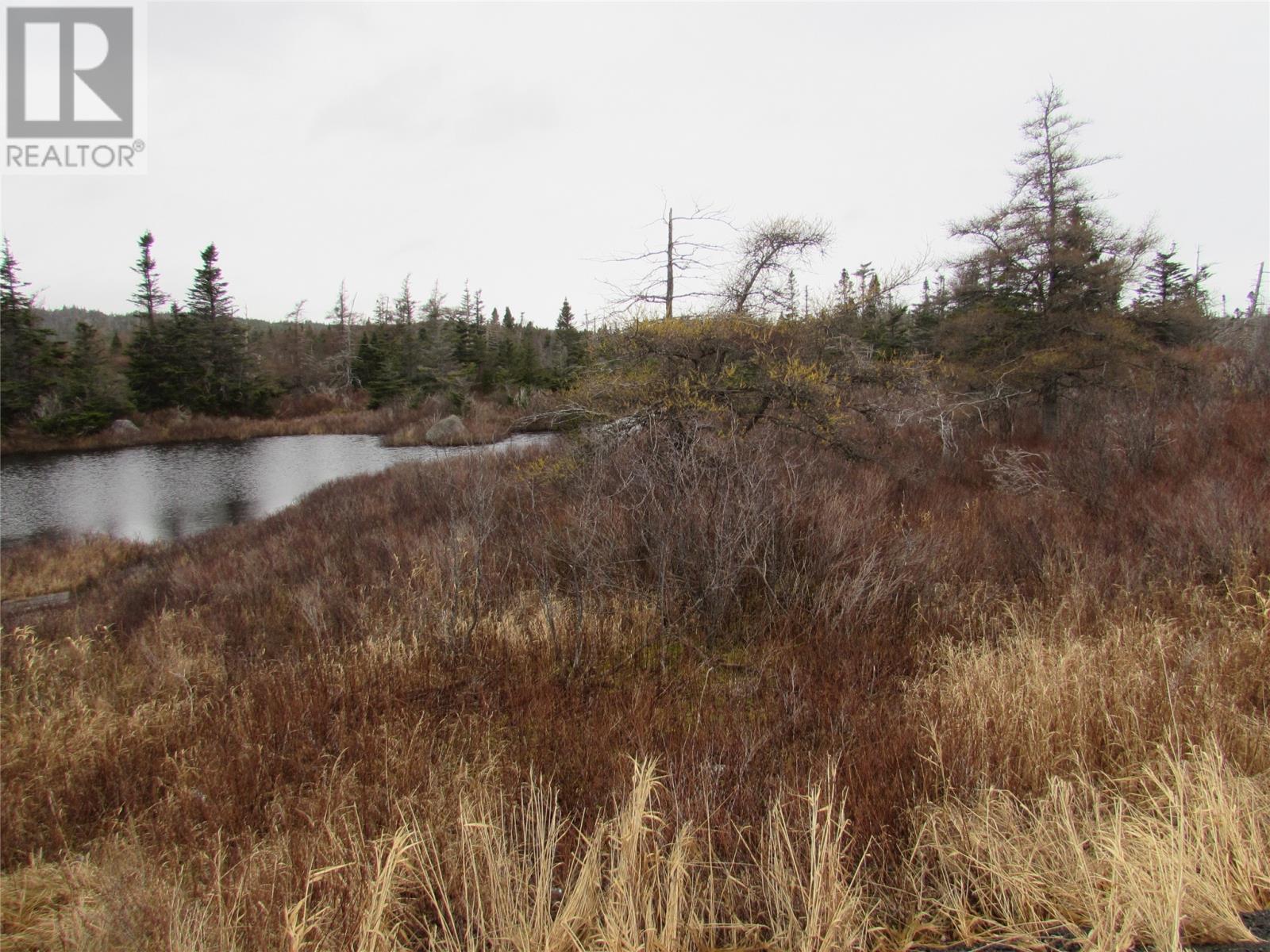 138-170 Salmonier Line, Holyrood, Newfoundland & Labrador  A0A 2R0 - Photo 26 - 1231056