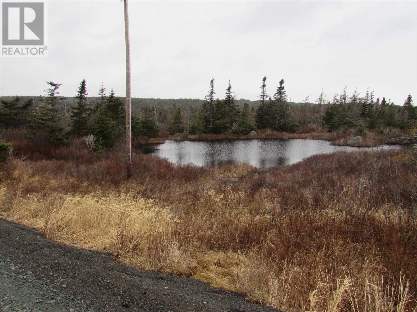 138-170 Salmonier Line, Holyrood, Newfoundland & Labrador  A0A 2R0 - Photo 27 - 1231056