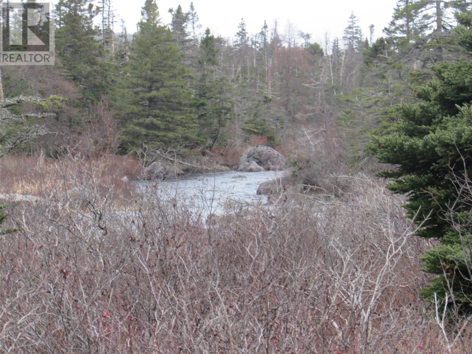 138-170 Salmonier Line, Holyrood, Newfoundland & Labrador  A0A 2R0 - Photo 30 - 1231056