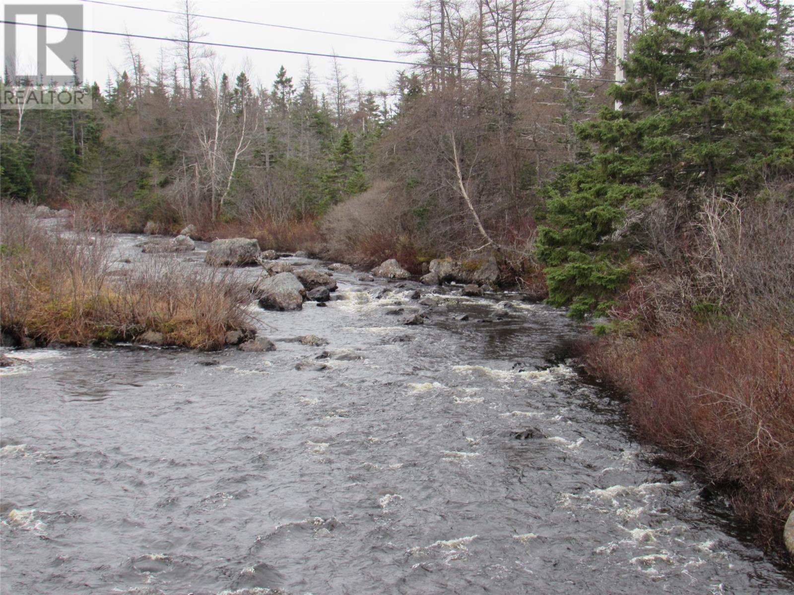 138-170 Salmonier Line, Holyrood, Newfoundland & Labrador  A0A 2R0 - Photo 31 - 1231056