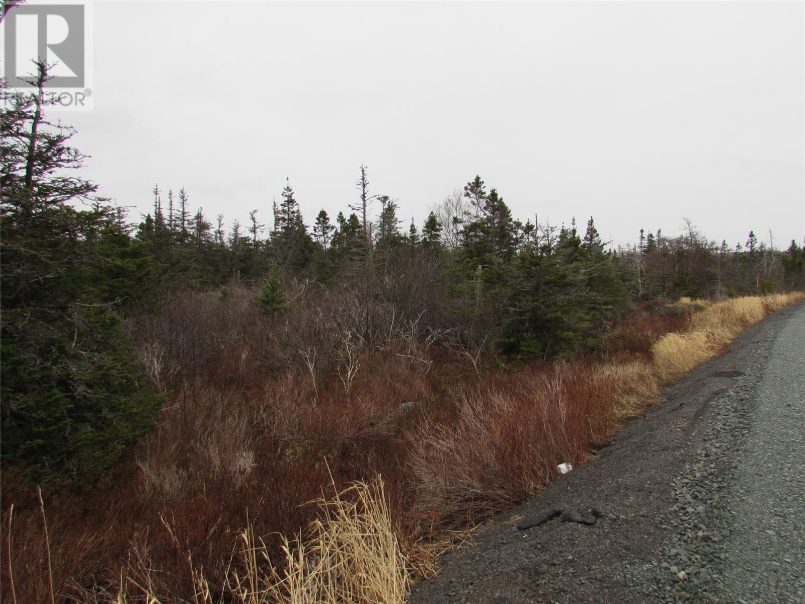 138-170 Salmonier Line, Holyrood, Newfoundland & Labrador  A0A 2R0 - Photo 35 - 1231056