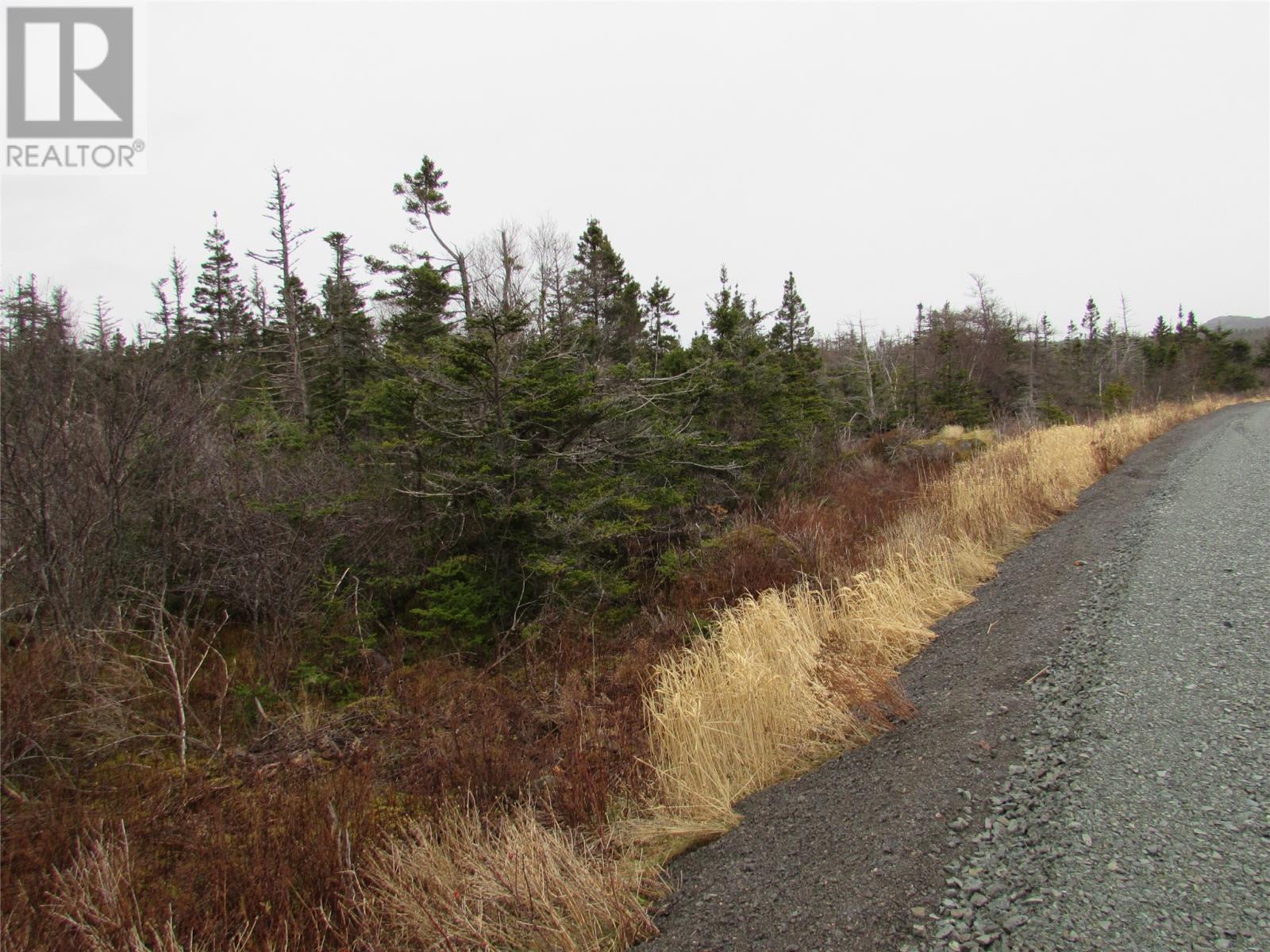 138-170 Salmonier Line, Holyrood, Newfoundland & Labrador  A0A 2R0 - Photo 37 - 1231056