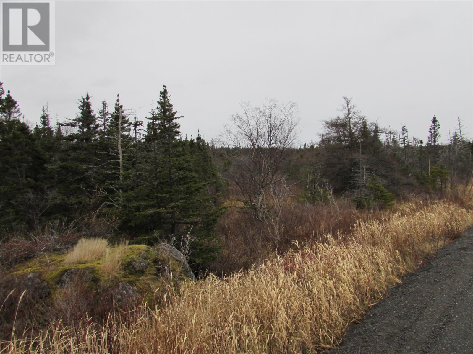 138-170 Salmonier Line, Holyrood, Newfoundland & Labrador  A0A 2R0 - Photo 38 - 1231056