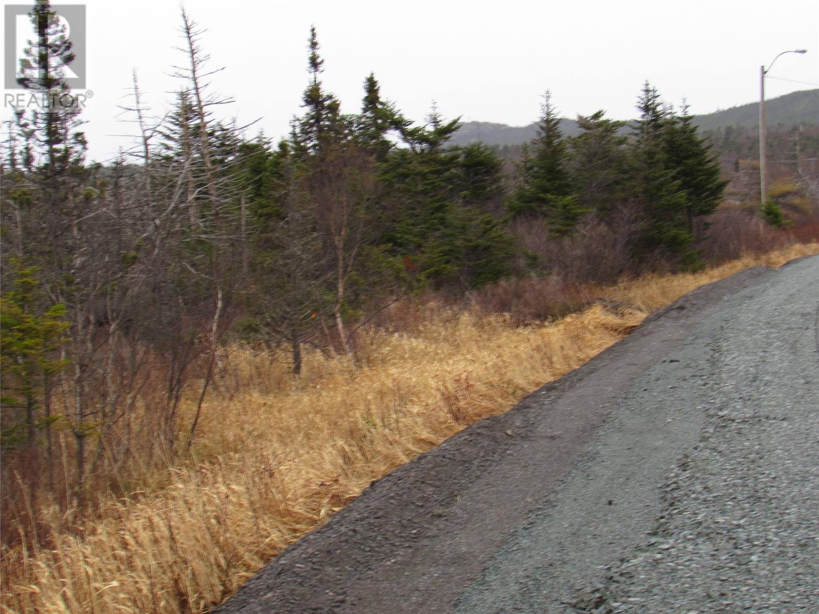 138-170 Salmonier Line, Holyrood, Newfoundland & Labrador  A0A 2R0 - Photo 39 - 1231056