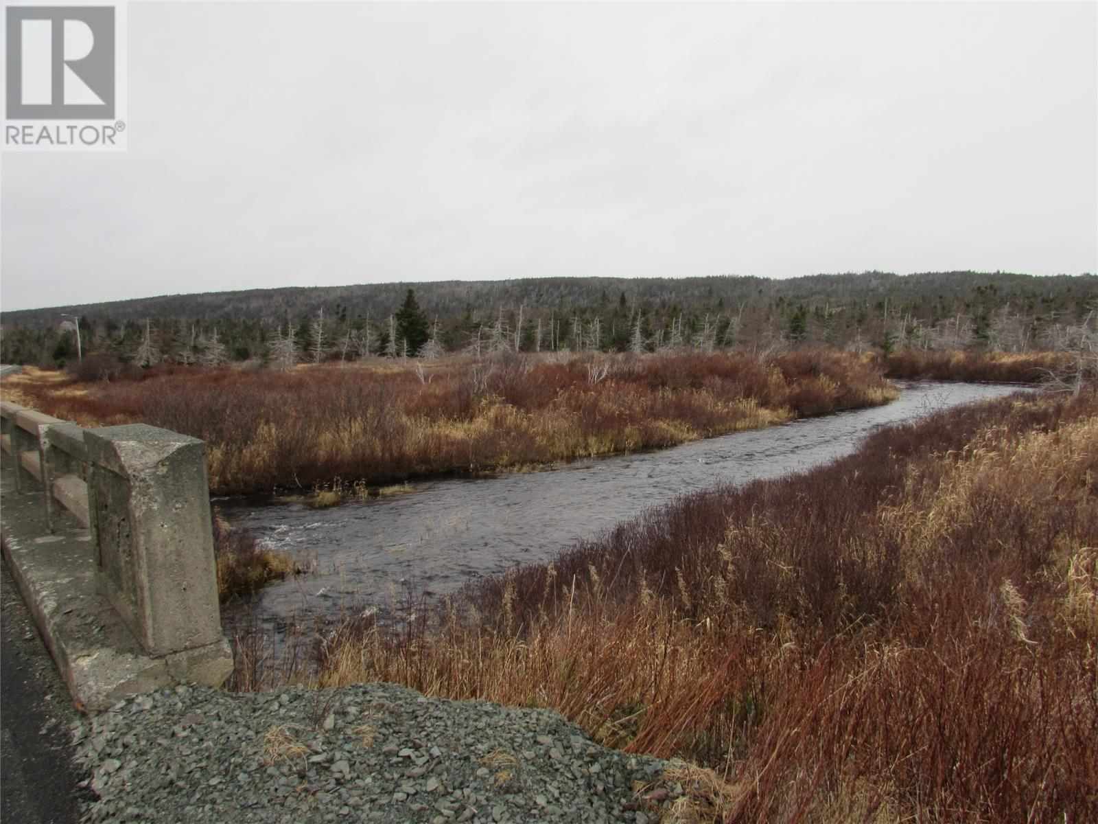 138-170 Salmonier Line, Holyrood, Newfoundland & Labrador  A0A 2R0 - Photo 6 - 1231056