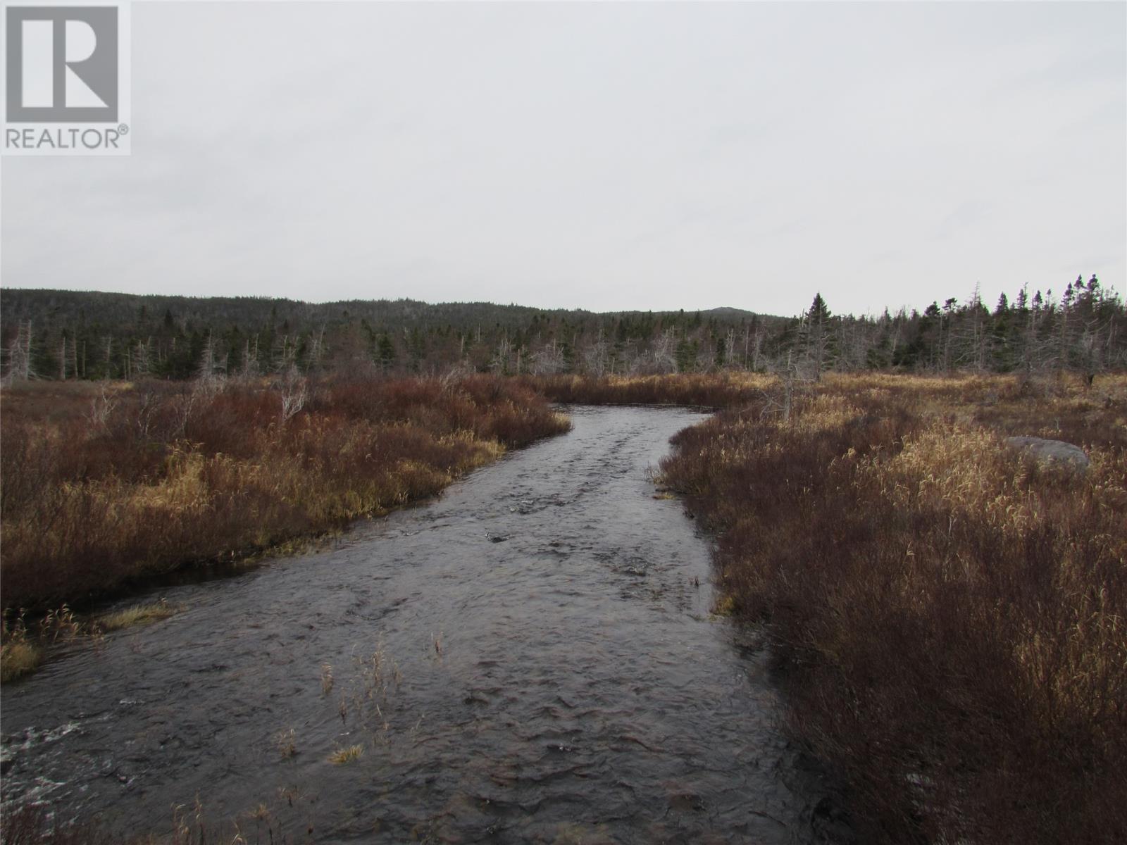 138-170 Salmonier Line, Holyrood, Newfoundland & Labrador  A0A 2R0 - Photo 7 - 1231056