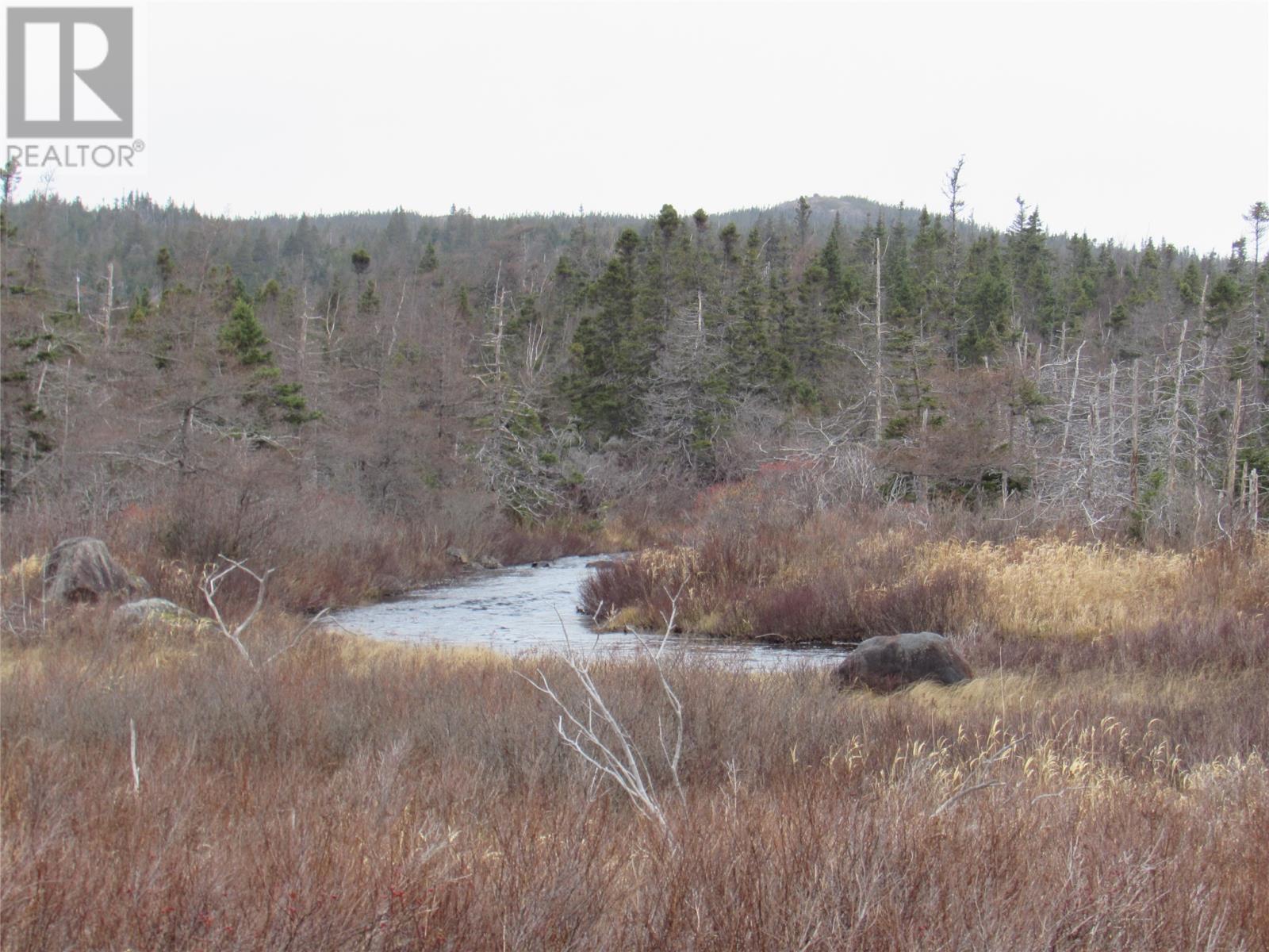 138-170 Salmonier Line, Holyrood, Newfoundland & Labrador  A0A 2R0 - Photo 9 - 1231056