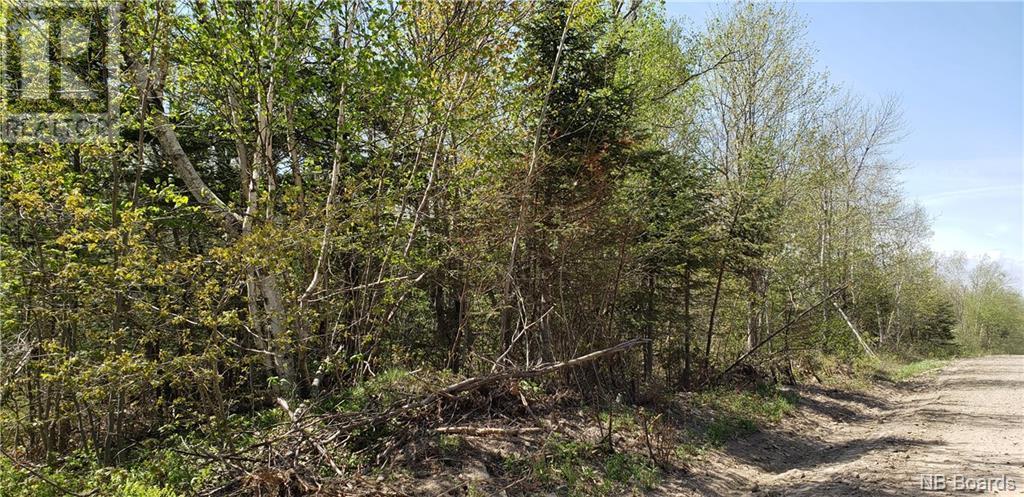 0 Old Royal Road, Birdton, New Brunswick  E3A 9R1 - Photo 5 - NB058470
