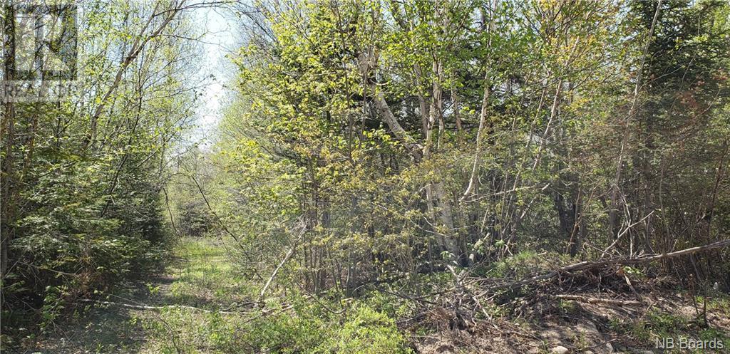 0 Old Royal Road, Birdton, New Brunswick  E3A 9R1 - Photo 1 - NB058470