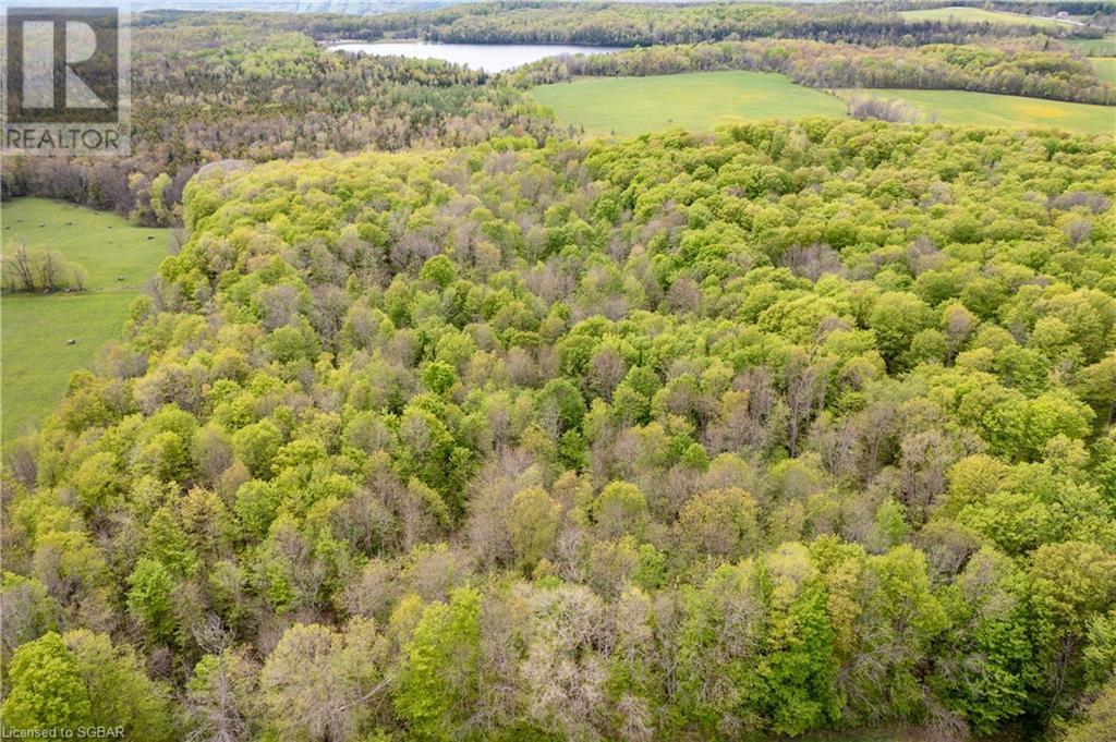 Lt 7 The Blue Mountains-Euphrasia Townline, Grey Highlands, Ontario  N0H 1J0 - Photo 15 - 40101846