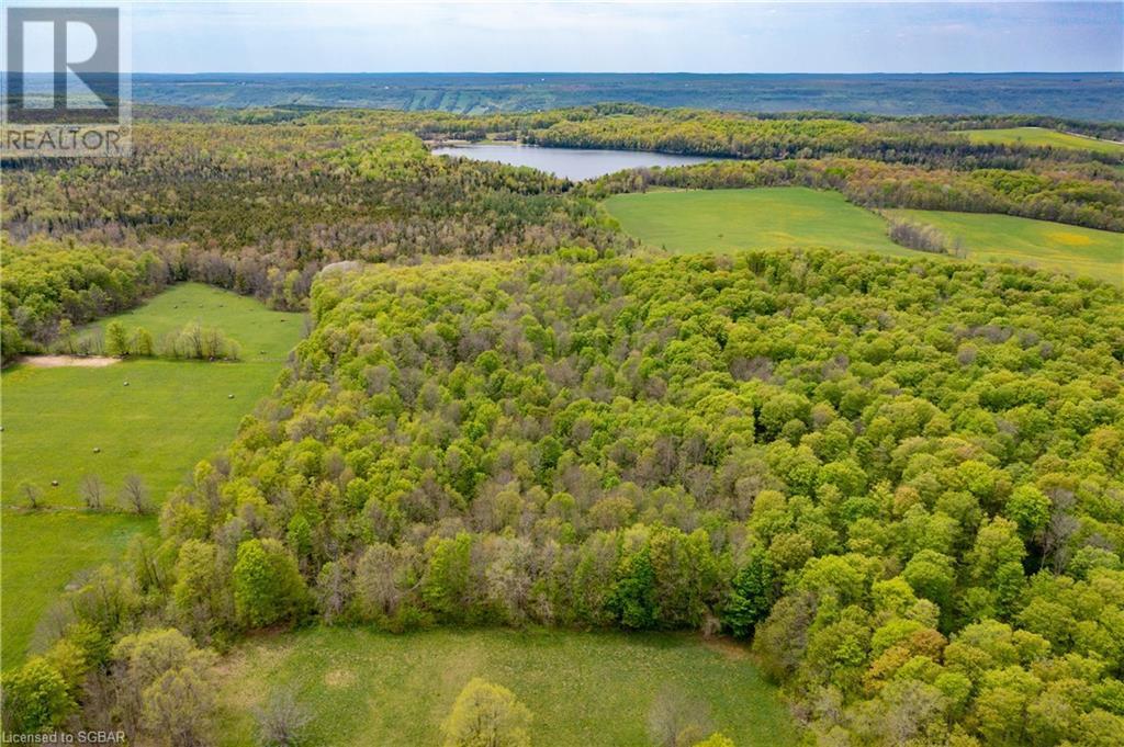 Lt 7 The Blue Mountains-Euphrasia Townline, Grey Highlands, Ontario  N0H 1J0 - Photo 2 - 40101846