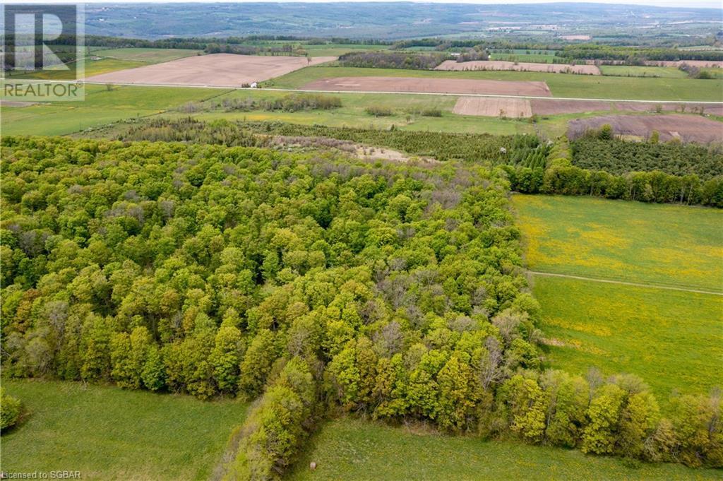 Lt 7 The Blue Mountains-Euphrasia Townline, Grey Highlands, Ontario  N0H 1J0 - Photo 3 - 40101846