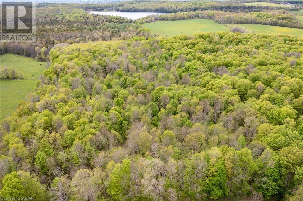 Lt 7 The Blue Mountains-Euphrasia Townline, Grey Highlands, Ontario  N0H 1J0 - Photo 32 - 40101846