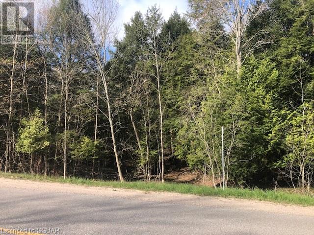 Lt 14 Chemin Du Loup Road, Tiny, Ontario  L9M 2H7 - Photo 1 - 40119789